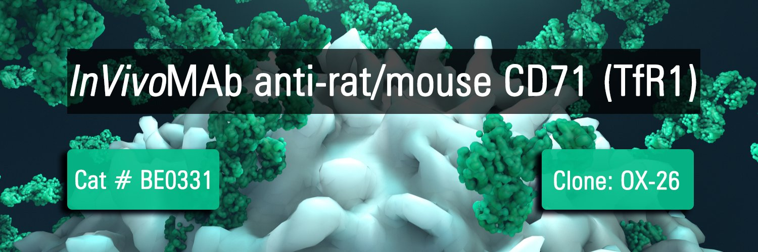 InVivoMAb anti-rat/mouse CD71 (TfR1)